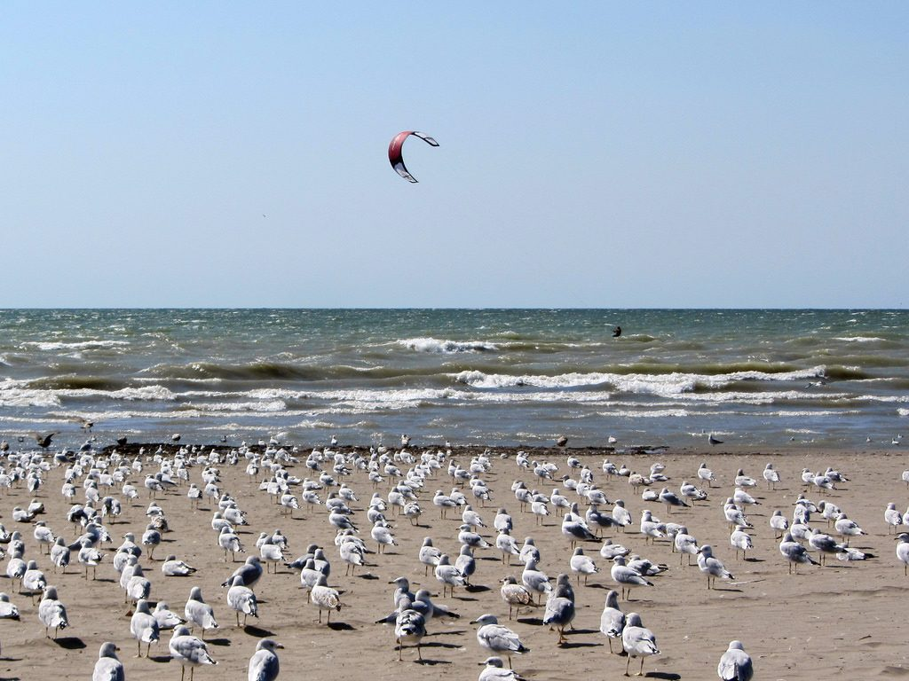 Kitesurfing Lake Erie one of the best Ontario adventures on activity holidays in Canada Flickr CC image by Loozrboy