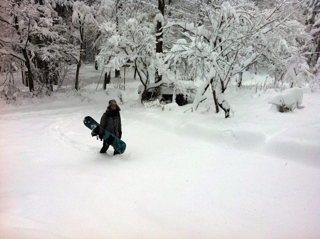 japanese snowboarding holidays - Hakuba - flickrcc image by Drew Bates