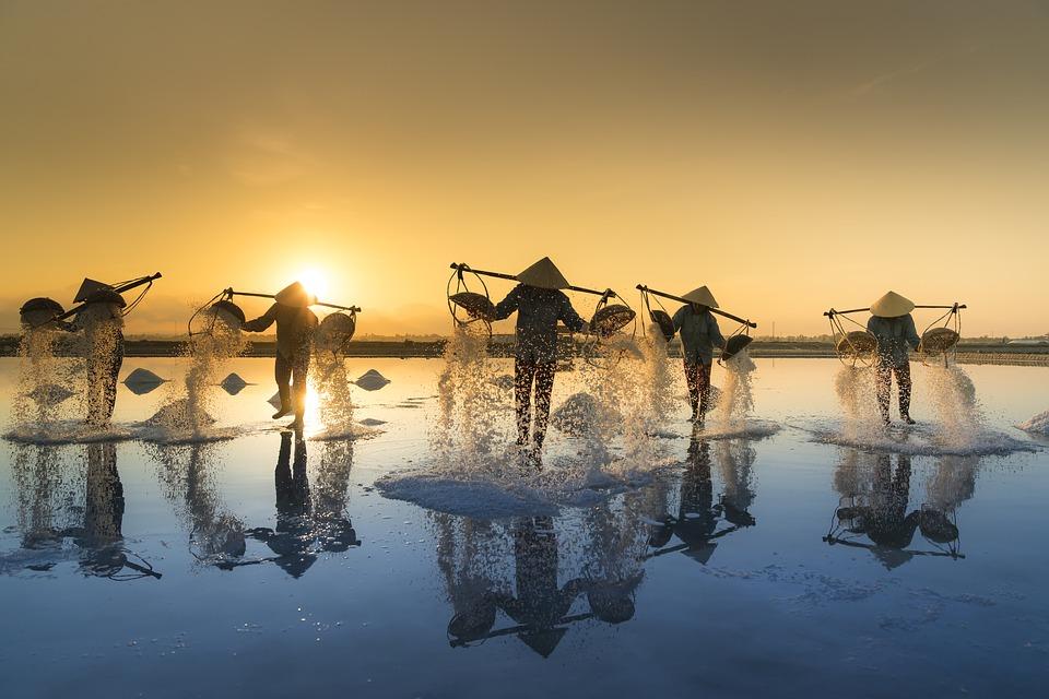 Vietnamese overlanding holidays salt harvesting Pixabay royalty free image