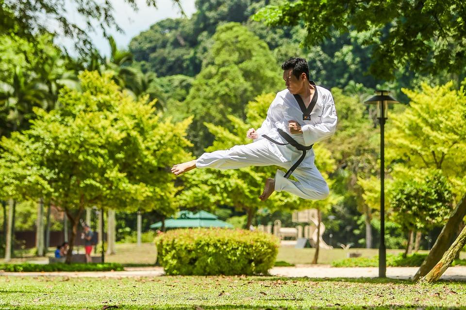 Chinese kung fu adventures Pixabay royalty free image