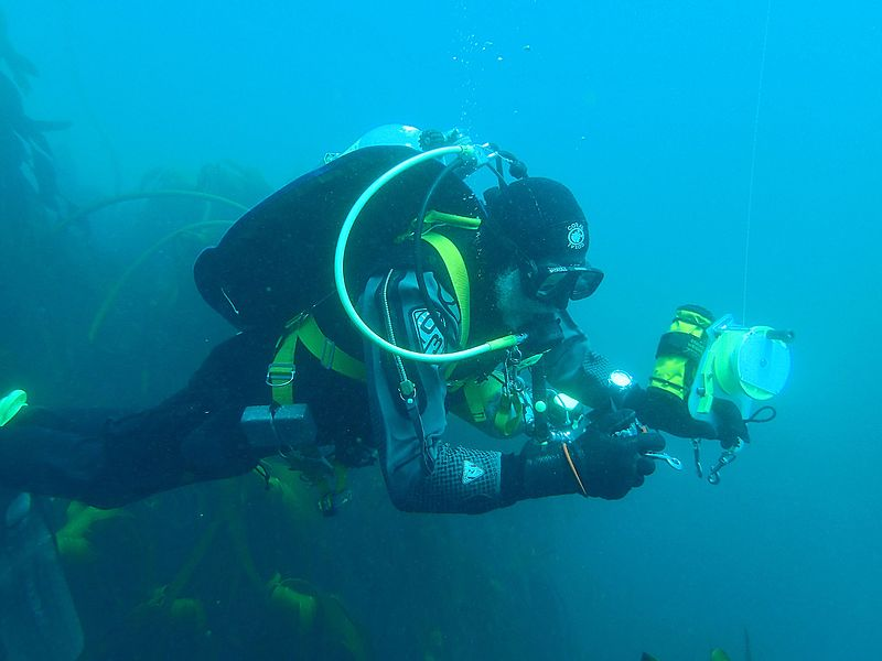 Guide to scuba diving drysuits Divers drysuit FAQ Wikimedia CC image by Martin Nieuwoudt
