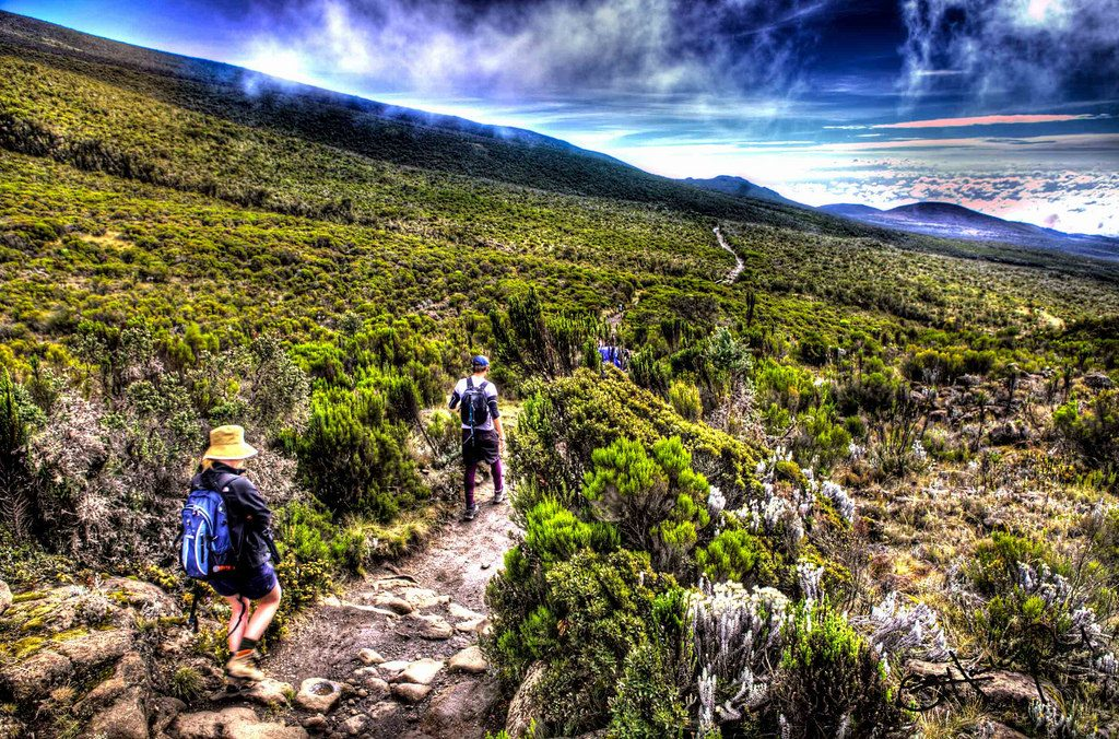 Kilimanjaro trekking one of the best beginner treks Flickr CC Image by SamHawleywood