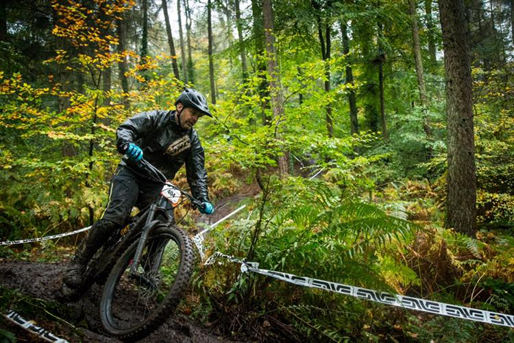 Review of riding a 29er Is easier mountain biking cheating    Image courtesy of Forest of Dean MTB