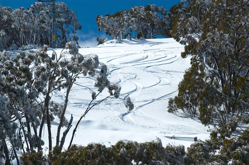 Victoria skiing holidays in Australia Mt Baw Baw one of the best Ski resorts near Melbourne. Facebook image from Mt Baw Baw