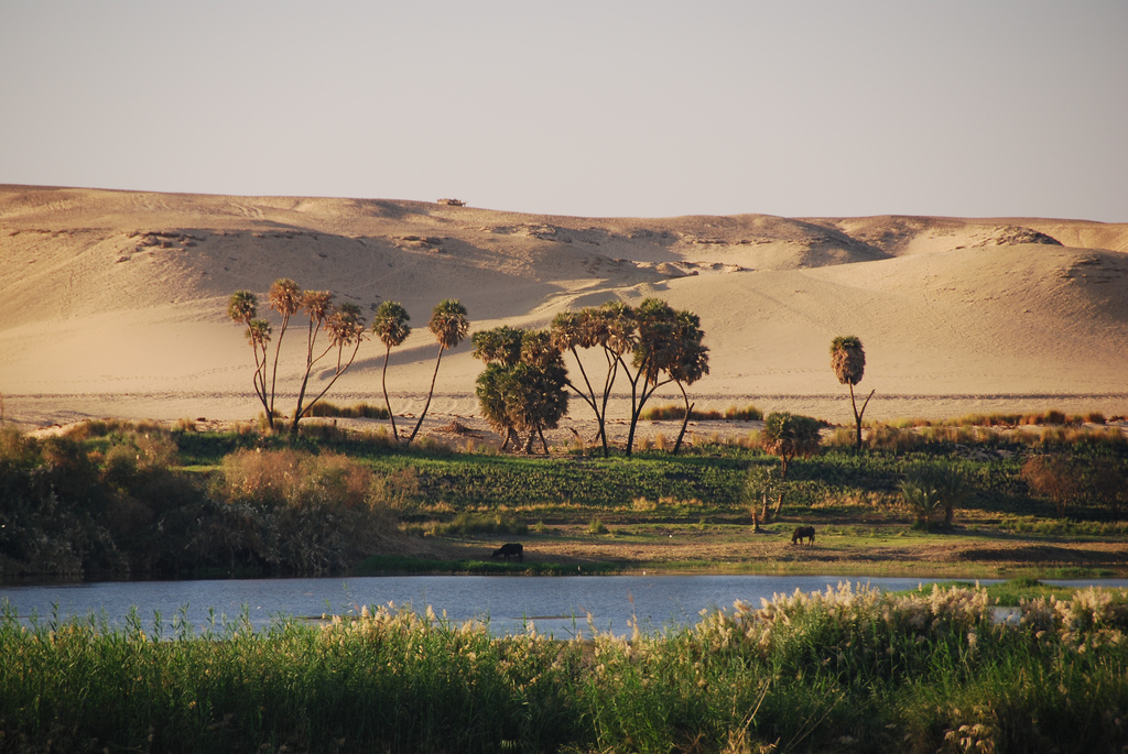River Nile Egypt one of the best Middle East overland adventures Flickr image by Michael Gwyther-Jones