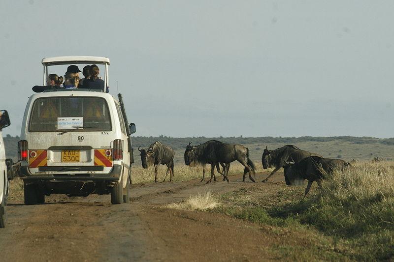 Top 10 African safari destinations Wikimedia image by DEMOSH