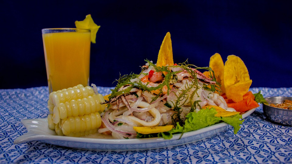 Pixabay royalty free image of Ceviche the dish of Peru