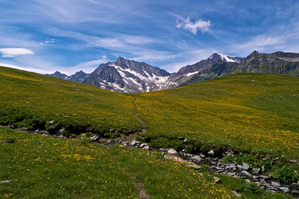 Switzerland trekking holidays Flickr image by iMaffo