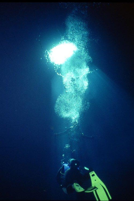 cape verde scuba diving flickr image by Al@in76