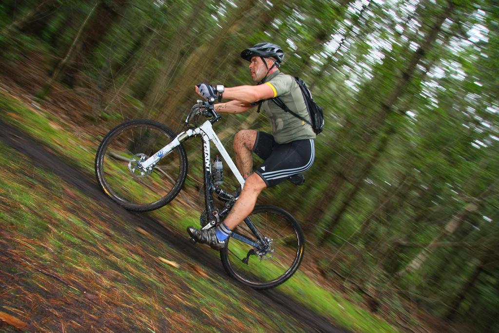 The South Downs Way mountain biking route flickr image bby Tonylanciabeta