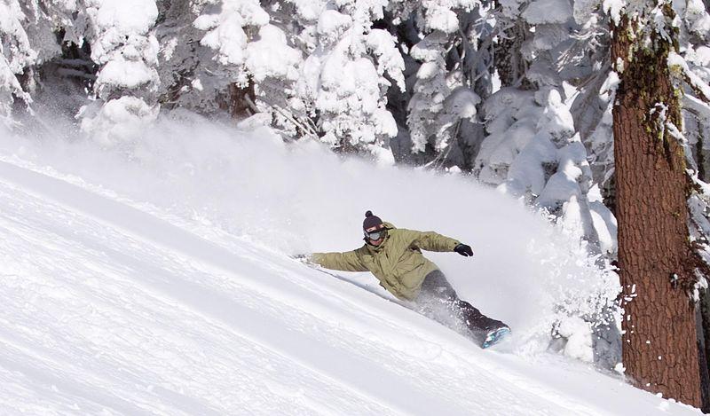 France Snowboarding Holidays Wikimedia image by Ripley119