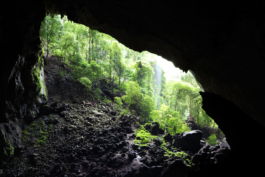 Malaysian Borneo overland holidays Deer Cave Mulu flickr image by gidovd