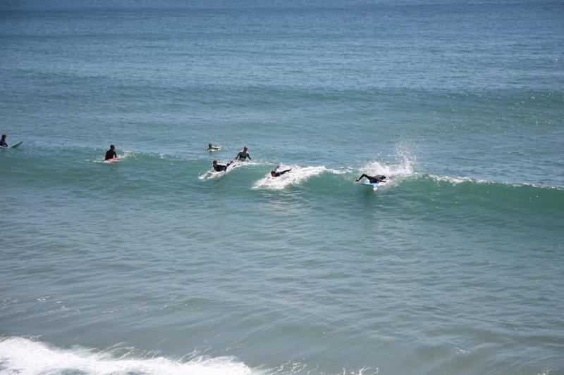 Begginner surf lessons image by Tamsin Ross Van Lessen