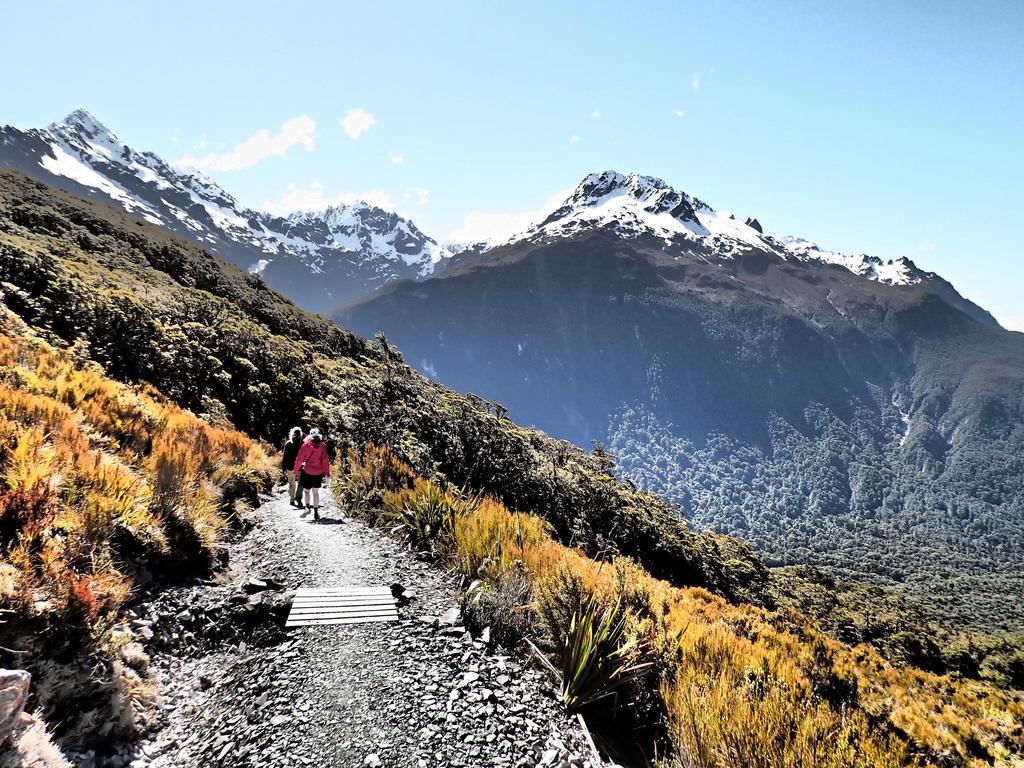 Best New Zealand trekking tours flickr image by Flying Kiwi Tours:Chris Reynolds