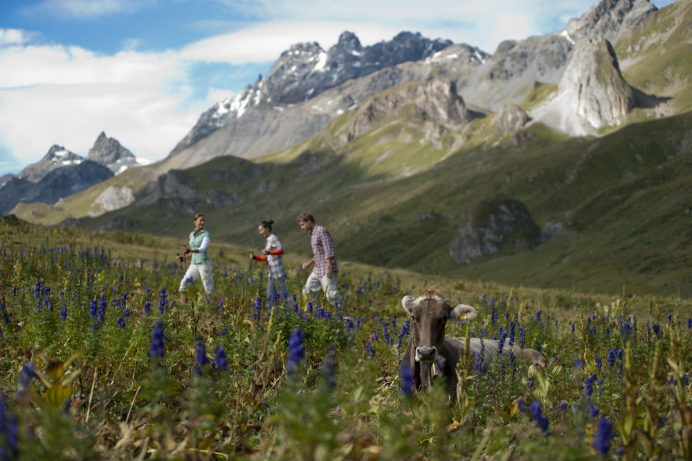 Ischgl trekking review the best gourmet walking holiday Copyright Tourism Paznaun-Ischgl