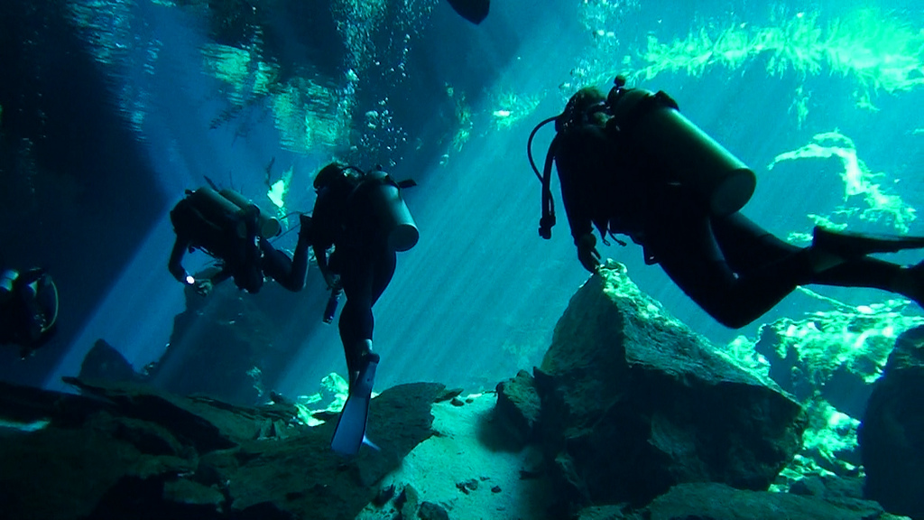 Scuba diving holidays in Mexico flickr image by Pavel Yudaev