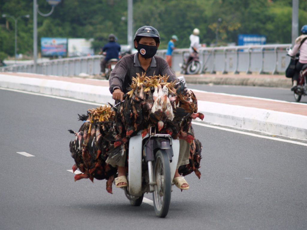 10 tips for a Vietnam overland motorcycle adventure Flickr image by wirralwater
