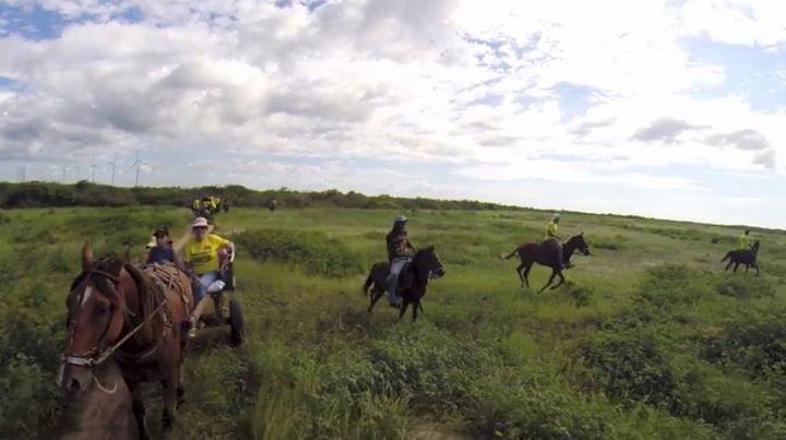 Vendom Hotels Discount: 10% off Horse Riding