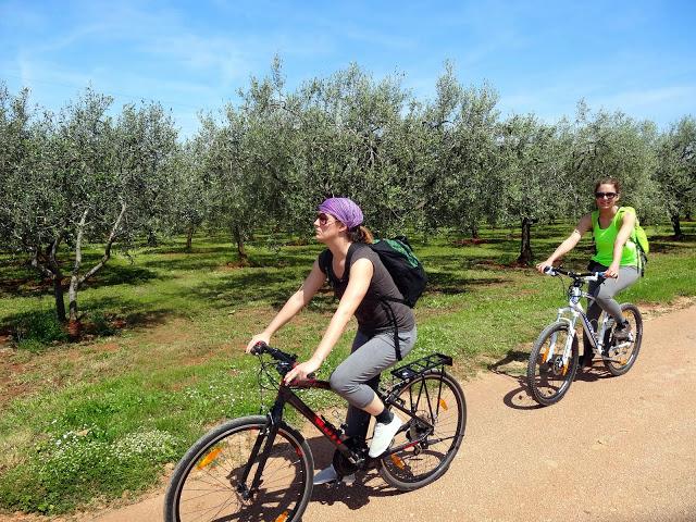 Huck Finn Adventure Travel Discount: 10% off Cycling