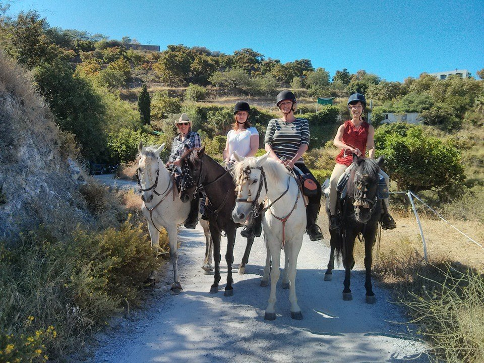 Totally Sorted Sports SL Discount: 10% off Horse Riding
