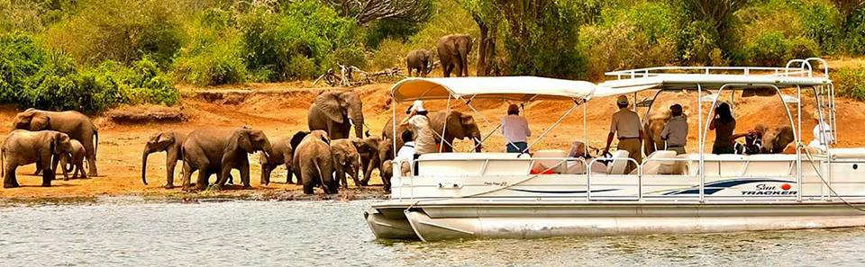 10% off Safari Courtesy of Pearl of Africa Tours & Travel (U) Ltd