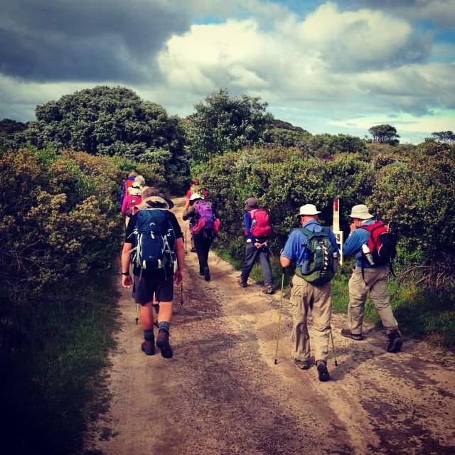 10% off Trekking Courtesy of Cape to Cape Explorer Tours