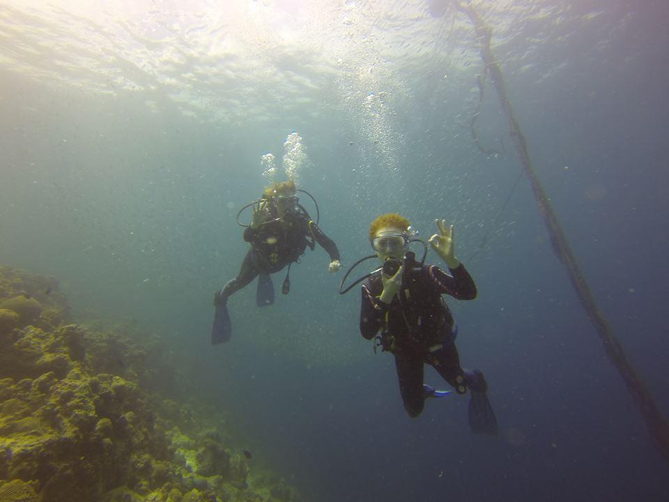 Neptune Diving Adventure Discount: 20% off Scuba Diving