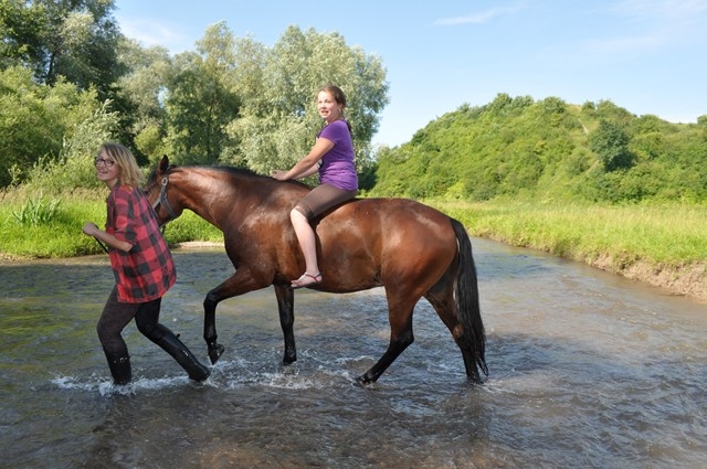 Ranch Amadeus Discount: 50% off Horse Riding