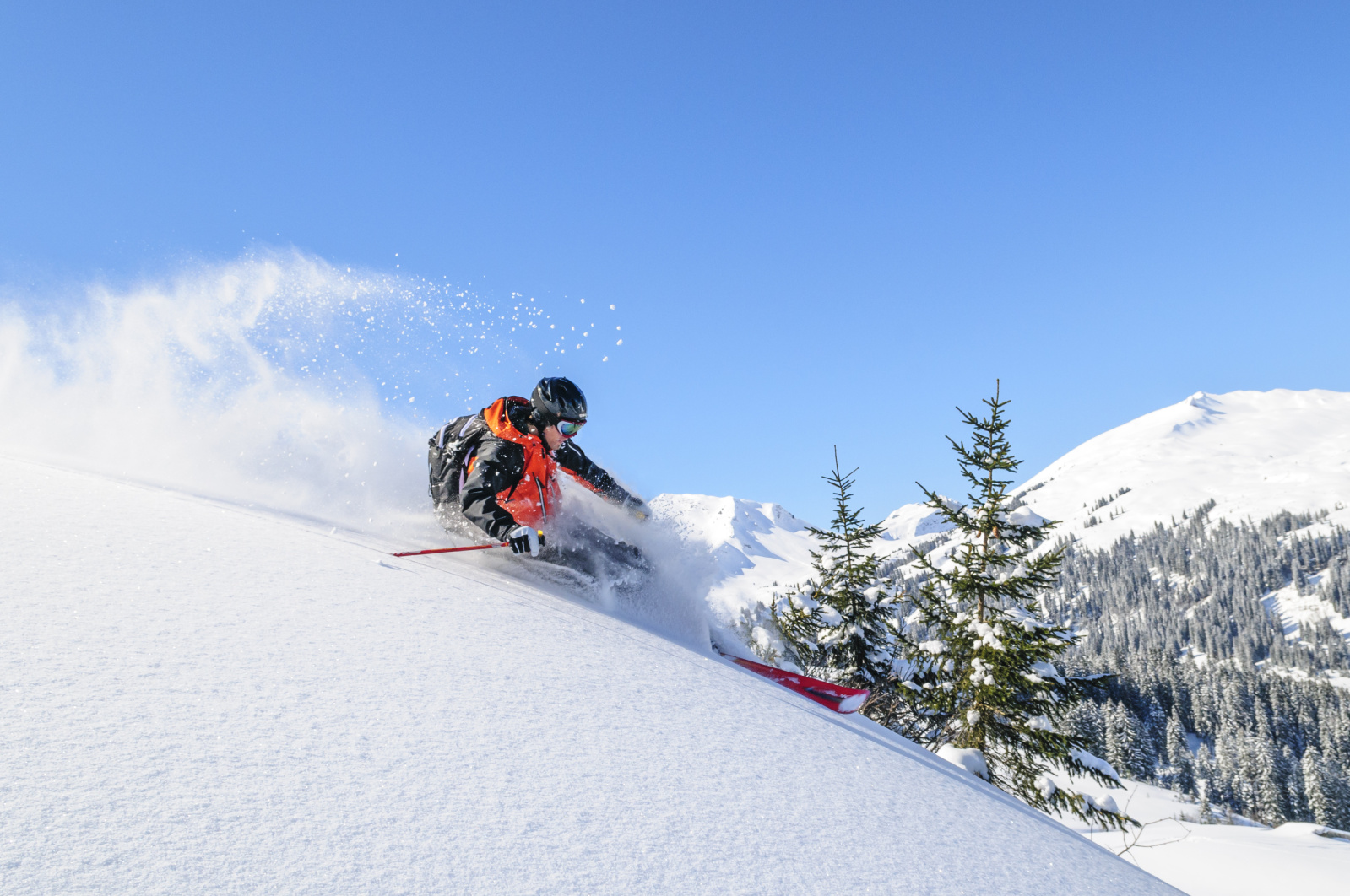 Ongosa discount: 5% off ski instructors and guides