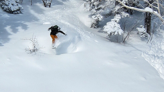 10 reasons to book a Japan ski holiday this winter 1 Flickr image by Perfect Zero