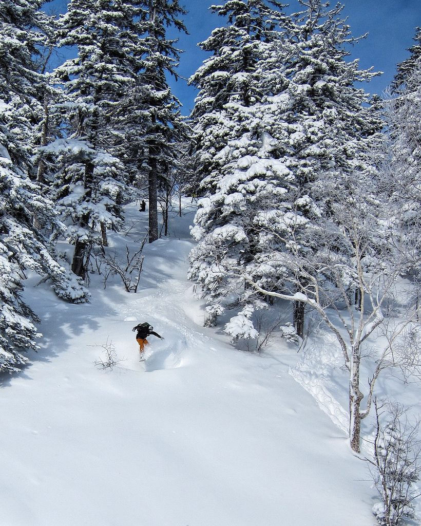 10 reasons to book a Japan ski holiday this winter 2 Flickr image by Perfect Zero