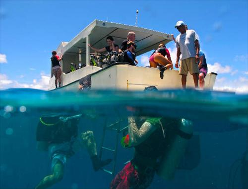 Coral View Utila discount: 15% off scuba diving in Honduras