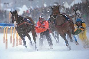 Skijoring 'Need for speed' Swiss adrenaline break Best extreme weekend