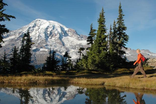 Evergreen Escapes Discount: 15% off nature walks