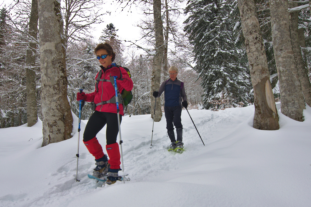 6 great reasons to try snowshoeing this winter image by The Adventure Creators