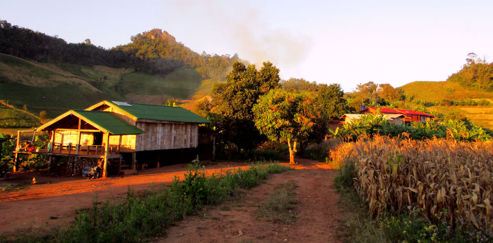 Review of Active Thailand trekking holiday in Chiang Dao mountains 9