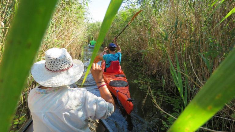 Drumcad discount: 50% off Danube Delta kayaking trips