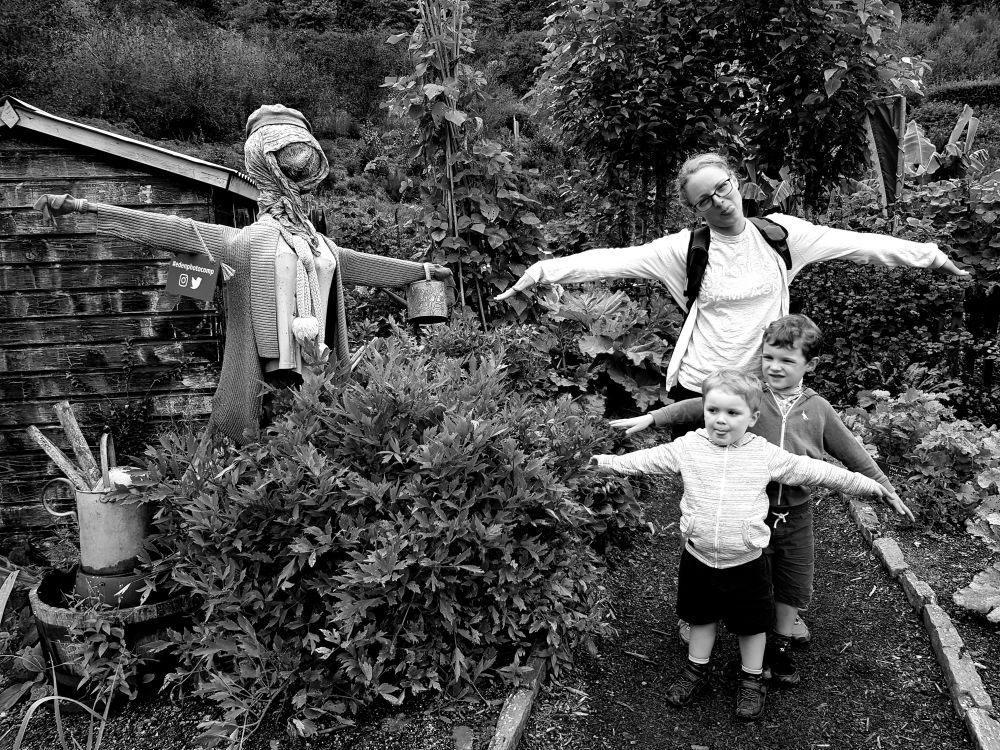 Day at Eden Project in Cornwall - gardens b&w