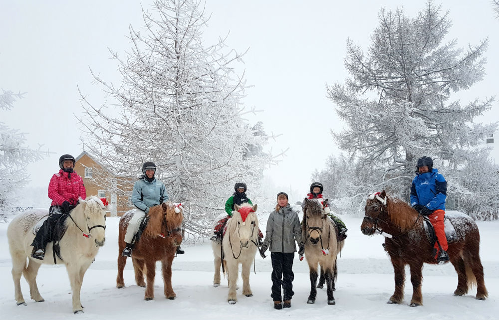 Horse riding during Christmas in Lapland Review of Ruka family adventure holiday