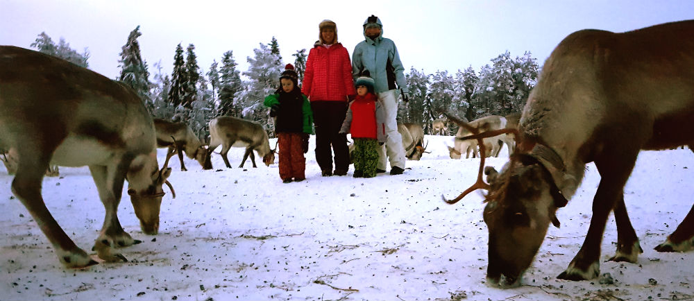 Reindeer experience Christmas in Lapland Review of Ruka family adventure holiday
