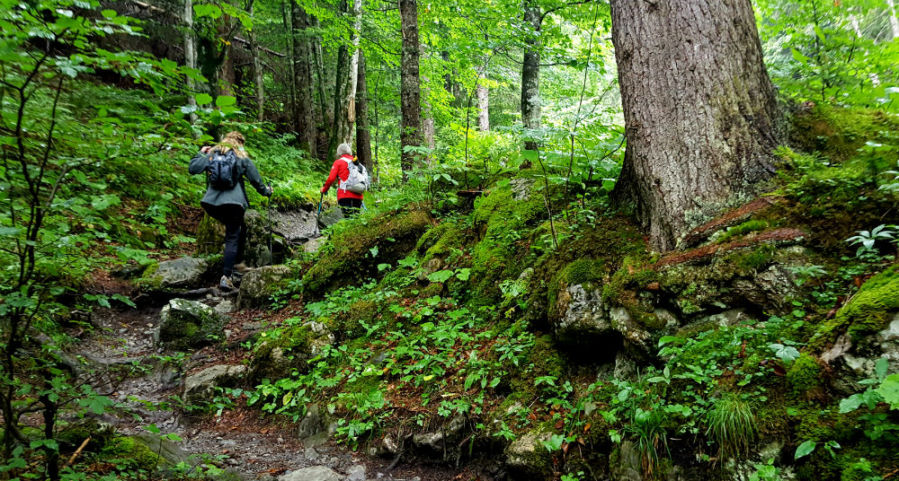 Review of Brandnertal multi activity family holiday in Vorarlberg hiking with BergAktiv