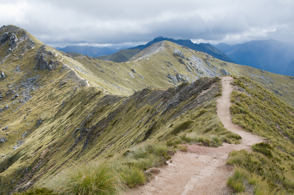 NZ trekking holidays Kepler track one of the best treks in New Zealand flickr CC image by evanforester