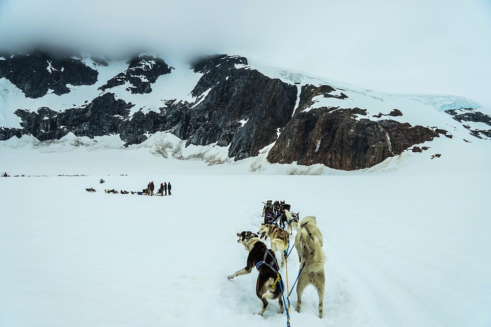 3 of the best adventure vacations in America Pixabay CC public domain image of dogsledding in alaska