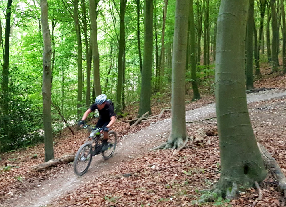 BTWIN Rockrider 560s review at Stanmer Park Brighton Best cheap full suspension mountain bike