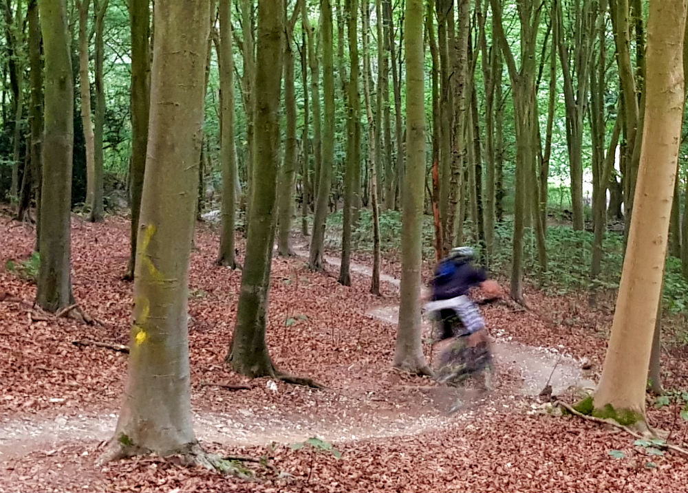 BTWIN Rockrider 560s review in Stanmer Park Brighton