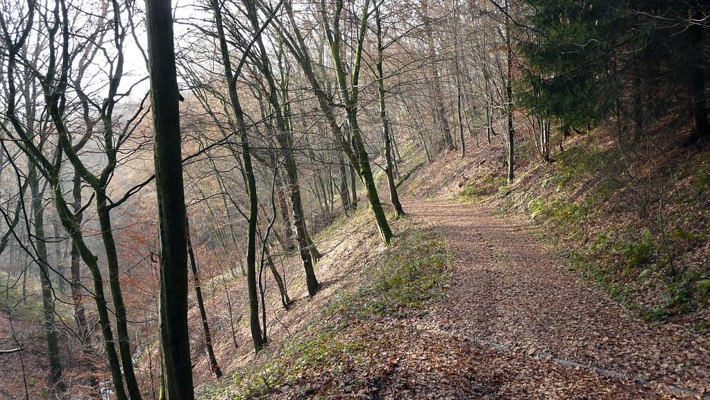guide to Germany trekking holidays Flickr CC image in Rhineland on Westerwald-Steig trek by mmertens_eu