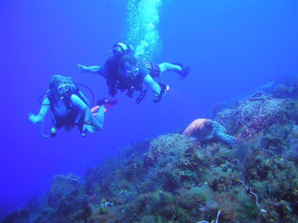 Diving Adventures Cozumel Discount: 15% off Scuba Diving