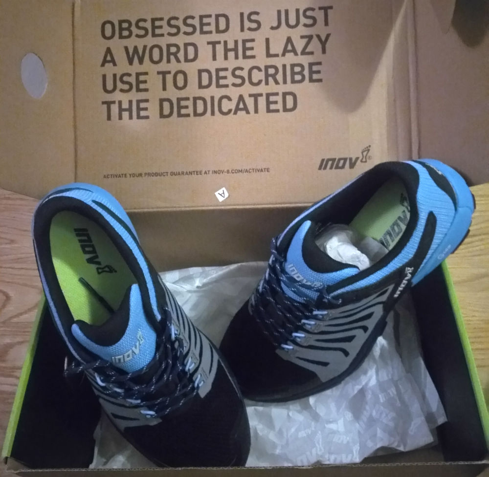 Review of Inov-8 Roclite 275 womens trail running shoes on Silvrettarun 3000