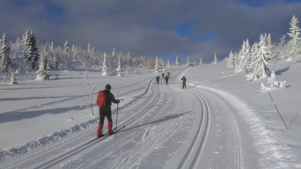 cross country skiing holiday in Norway by Undiscovered Mountains