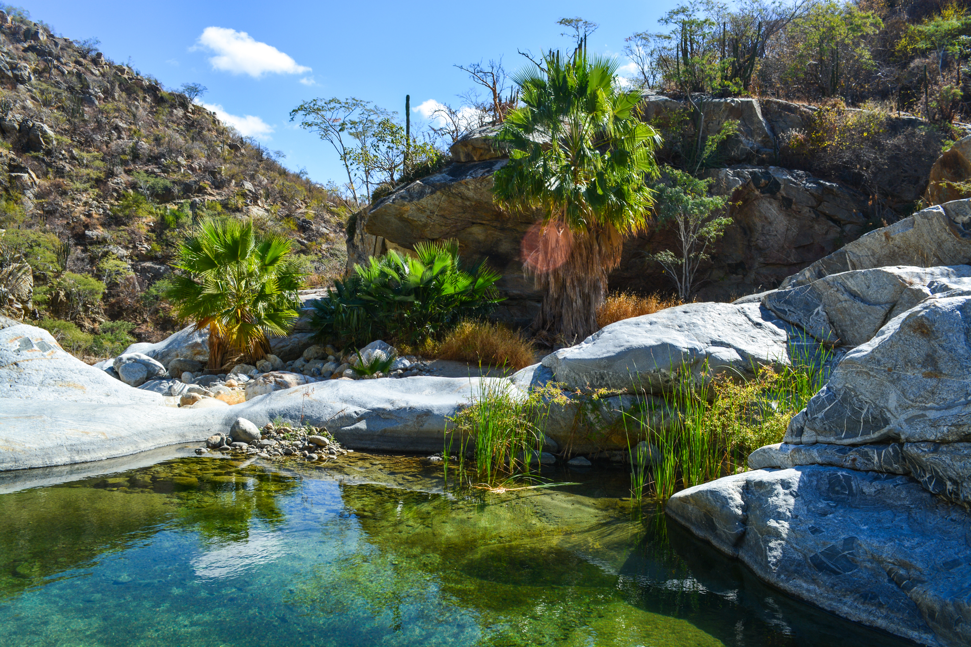 Private guided Fox Canyon hike in Cabo: Mexico hiking day trip